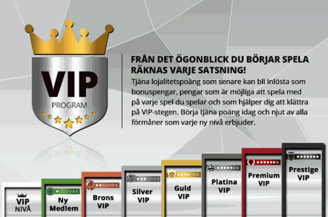 vip-bonus magic red casino